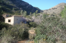 Land for building For Sale in Jalon, Alicante