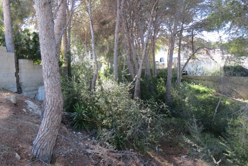 Land for building in Moraira Cap Blanc