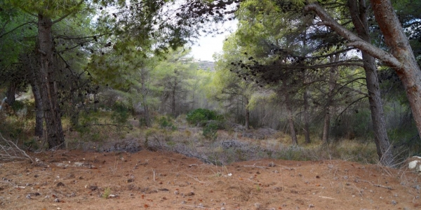Land for building in Benimeit
