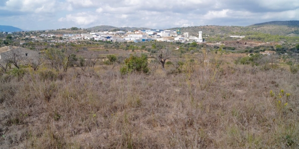 Land for building in Partida Berdica