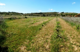 Land for building For Sale in Teulada, Alicante