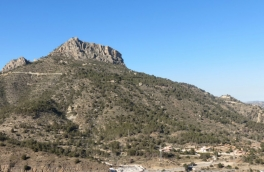 Land for building For Sale in Calpe, Alicante