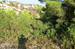 Land for building For Sale in Cumbre Del Sol, Alicante