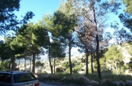 Land for building For Sale in Altea, Alicante