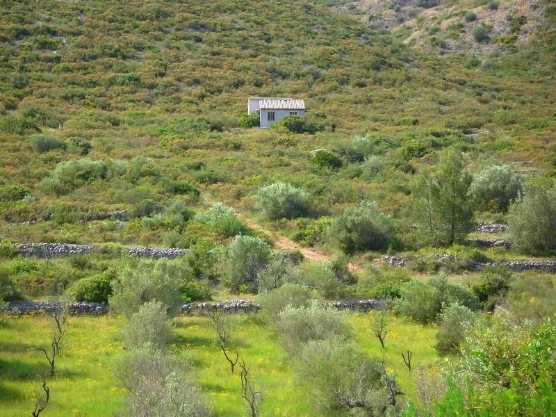 Land for building For Sale in Alcalali, Alicante (Costa Blanca)